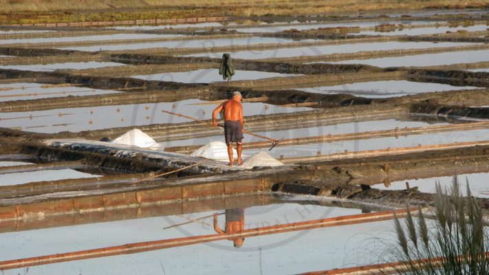 Artisanal salt production in Cale do Oiro saltpans (Aveiro municipality, Ria de Aveiro region)