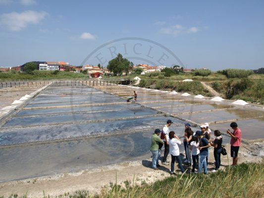 Environmental activity with students during Campus Junior (Santiago da Fonte saltpans - owned and managed by the University of Aveiro, Aveiro municipality, Ria de Aveiro region)