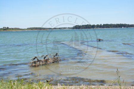 B1 - Oyster parks 2 - Locmariaquer (Gulf of Morbihan, Brittany) - Sybill HENRY
