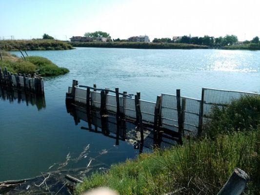 Keramoti lagoon fish fence